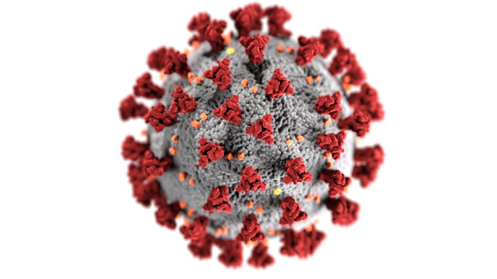 Enlarged view of COVID-19 virus